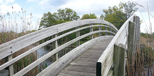 ryan-park-bridge