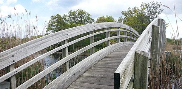 ryan-park-bridge
